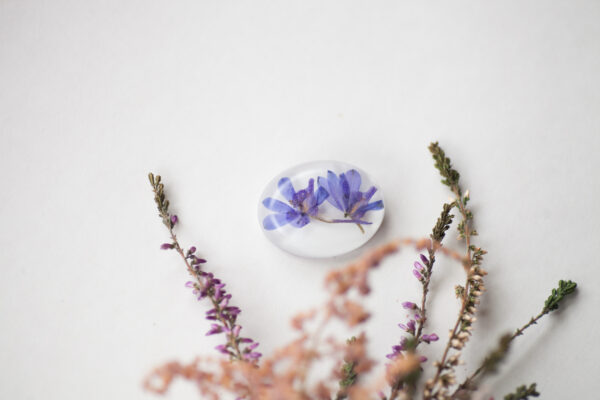 Mėlynos gėlės sagė